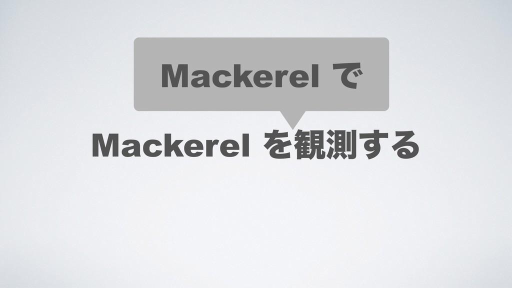 Mackerel Ͱ Mackerel Λ؍ଌ͢Δ