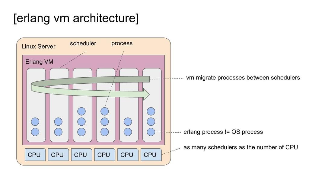 [erlang vm architecture] Linux Server Erlang VM...