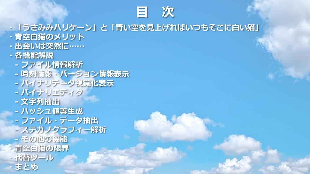 目 次 ・「うさみみハリケーン」と「青い空を見上げればいつもそこに白い猫」 ・青空白猫のメリッ...