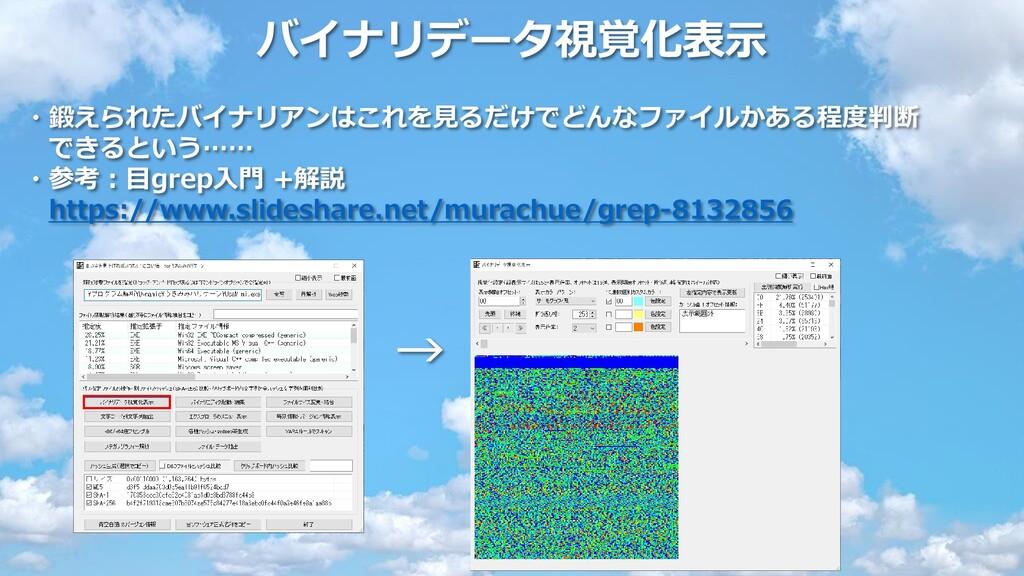 バイナリデータ視覚化表示 ・鍛えられたバイナリアンはこれを見るだけでどんなファイルかある程度判...