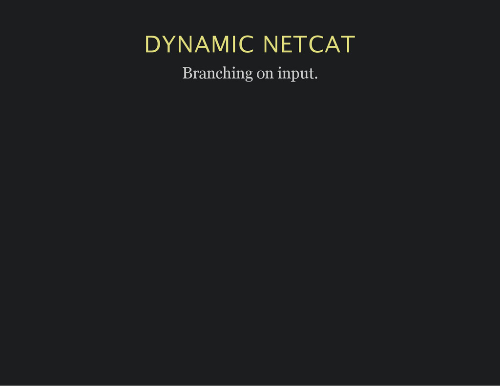 DYNAMIC NETCAT Branching on input.
