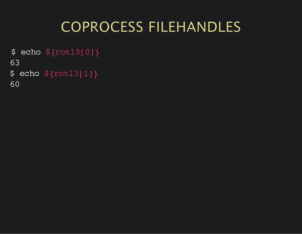COPROCESS FILEHANDLES $ e c h o $ { r o t 1 3 [...