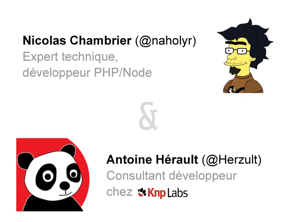 Nicolas Chambrier (@naholyr) Expert technique, ...