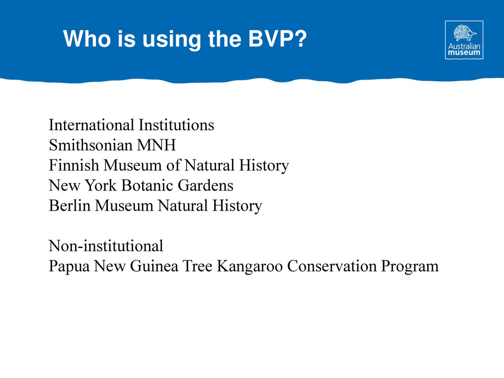 Who is using the BVP? International Institution...