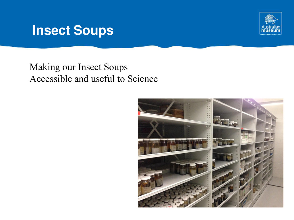 Insect Soups Making our Insect Soups Accessible...