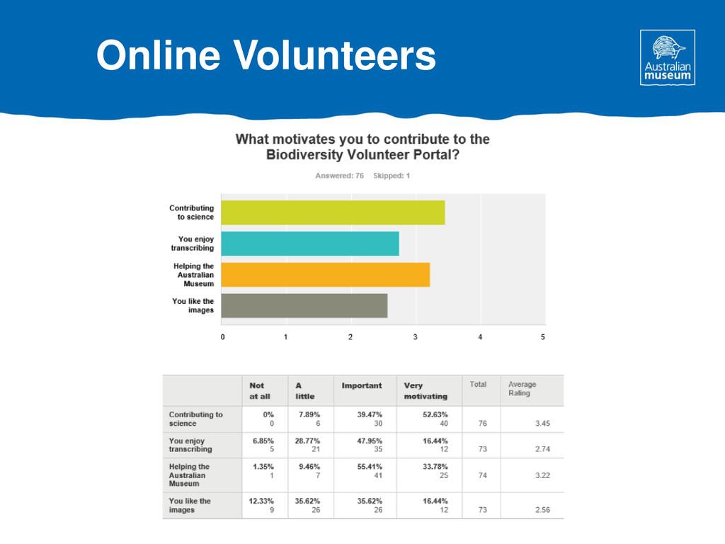 Online Volunteers