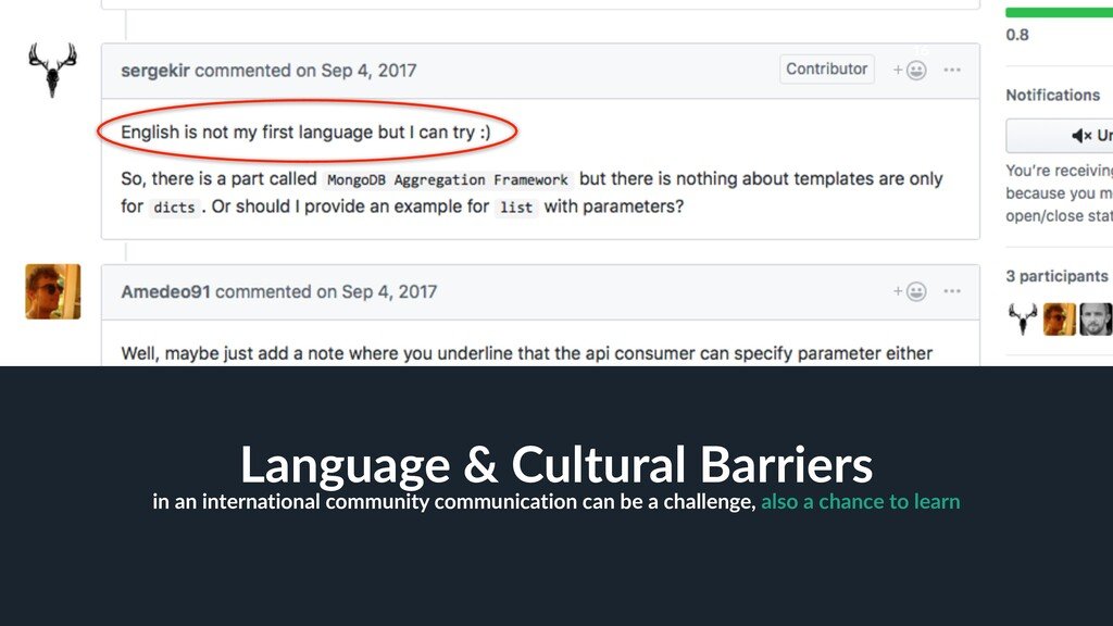 16 Language & Cultural Barriers in an internati...