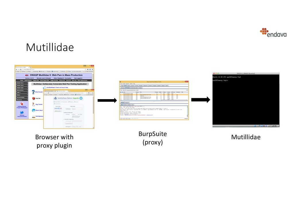 Mutillidae Mutillidae BurpSuite (proxy) Browser...