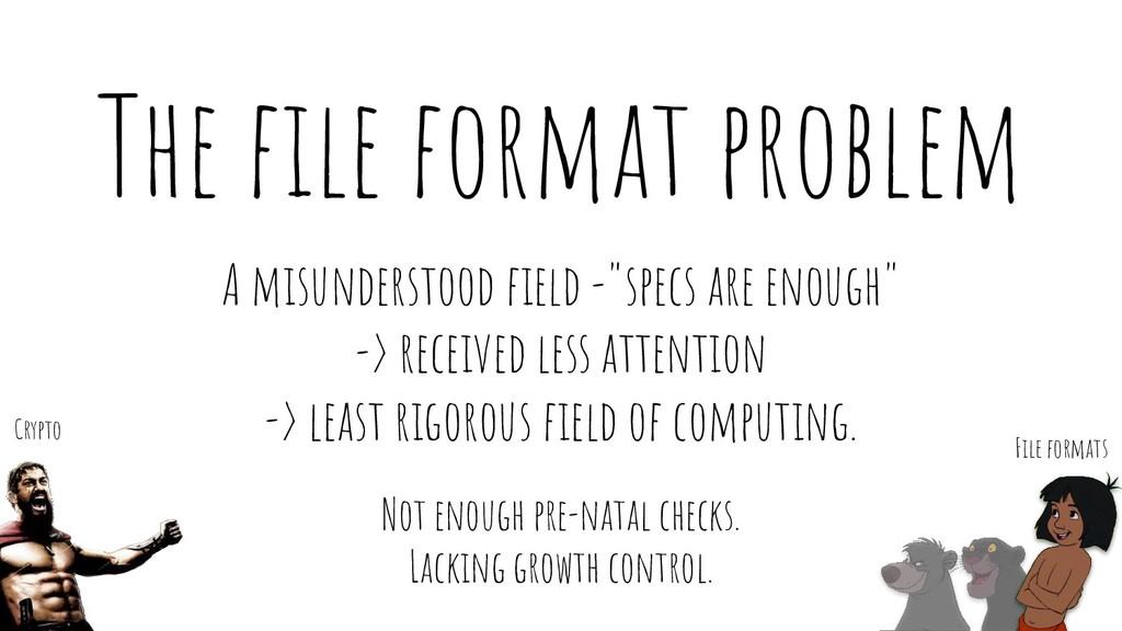 "The file format problem A misunderstood field -""s..."