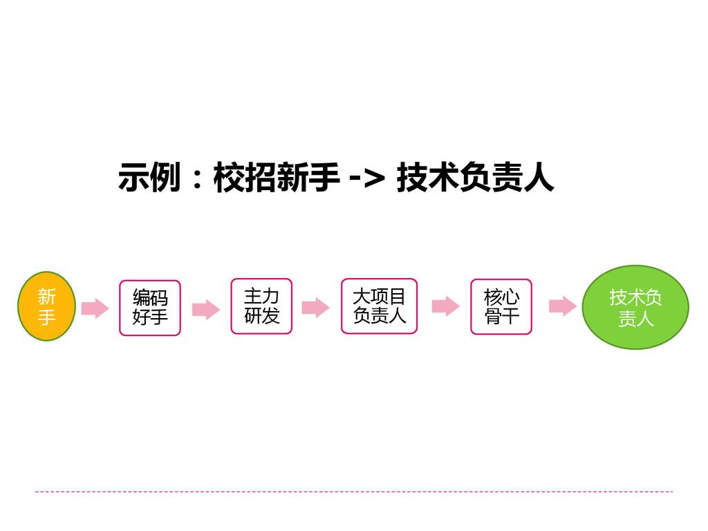 示例:校招新手 -> 技术负责人 编码 好手 大项目 负责人 主力 研发 核心 骨干 新 手 ...