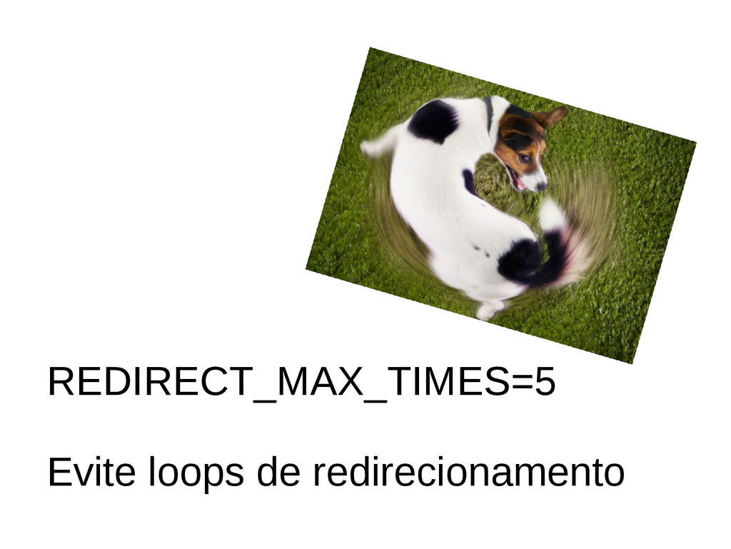 REDIRECT_MAX_TIMES=5 Evite loops de redireciona...