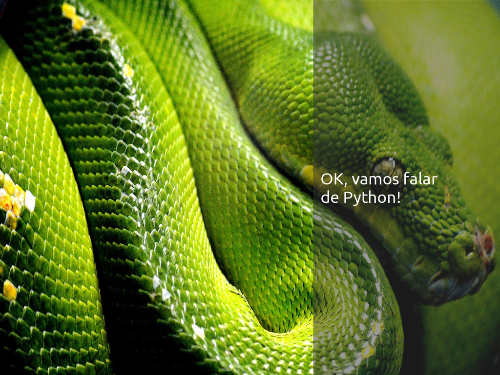 OK, vamos falar de Python!