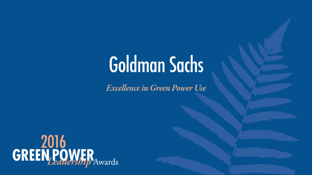 Excellence in Green Power Use Goldman Sachs