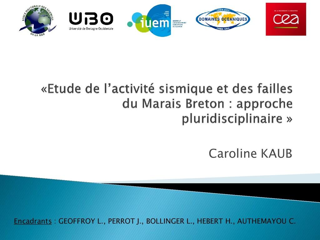 Caroline KAUB Encadrants : GEOFFROY L., PERROT ...