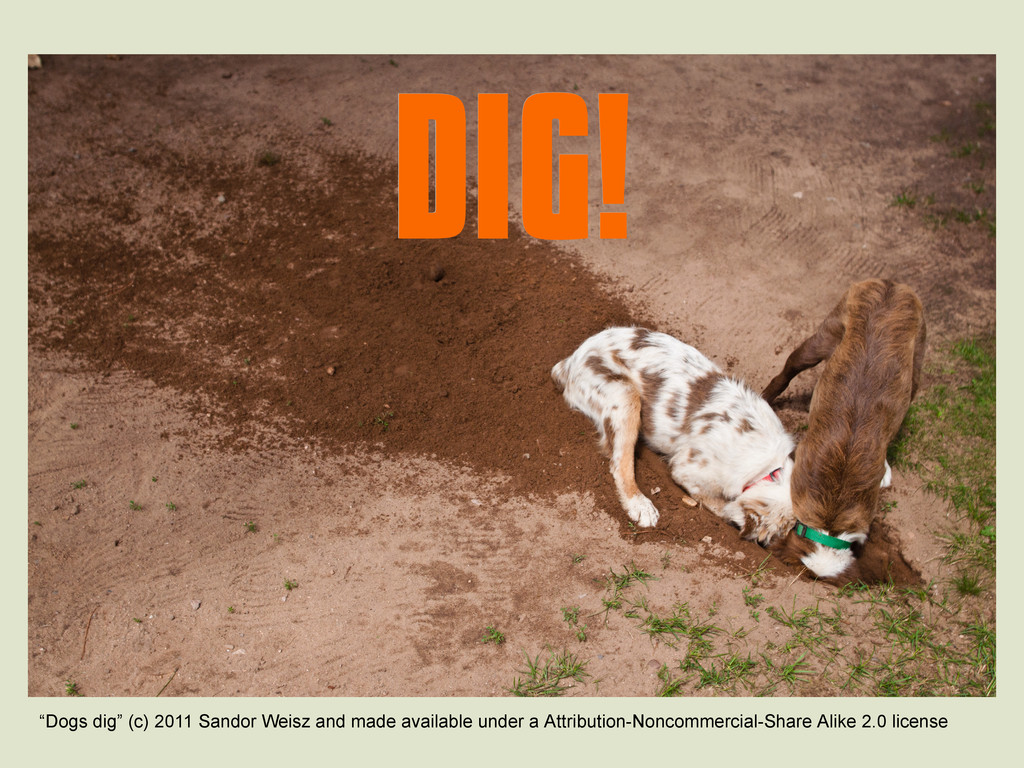 "DIG! DIG! ""Dogs dig"" (c) 2011 Sandor Weisz and ..."
