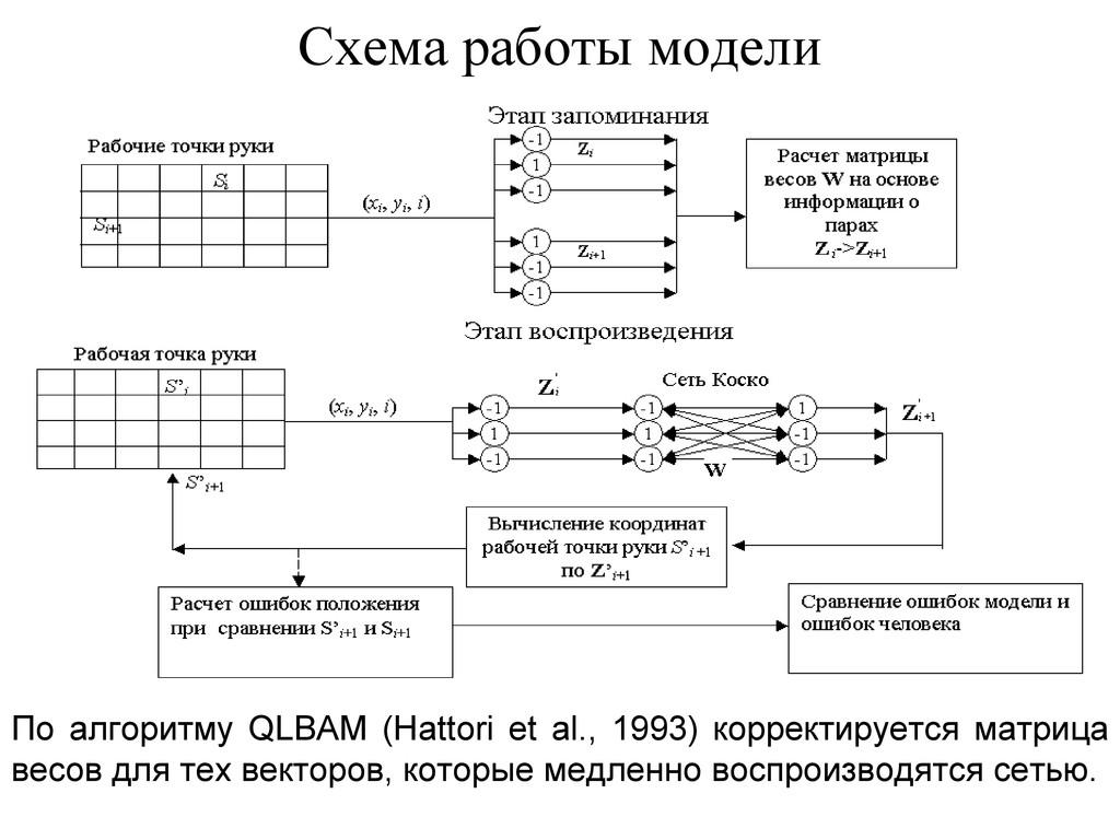 Схема работы модели По алгоритму QLBAM (Hattori...