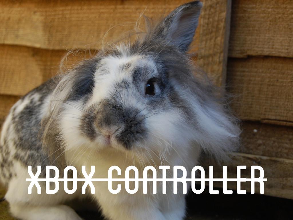 Demo Time xbox Controller