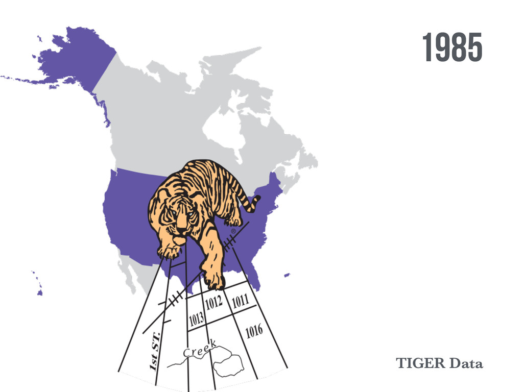 1985 TIGER Data