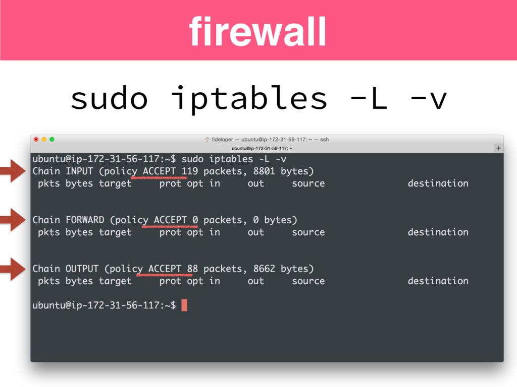 sudo iptables -L -v firewall