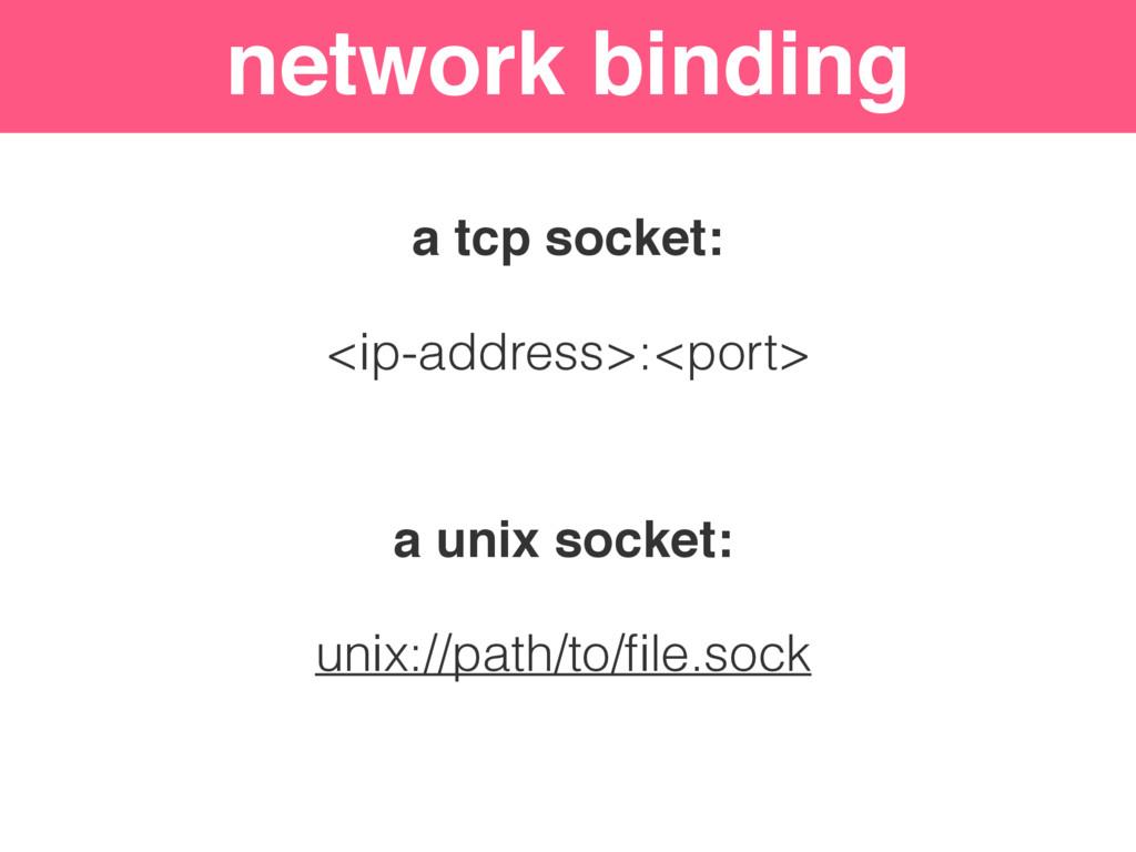 network binding a tcp socket: <ip-address>:<por...