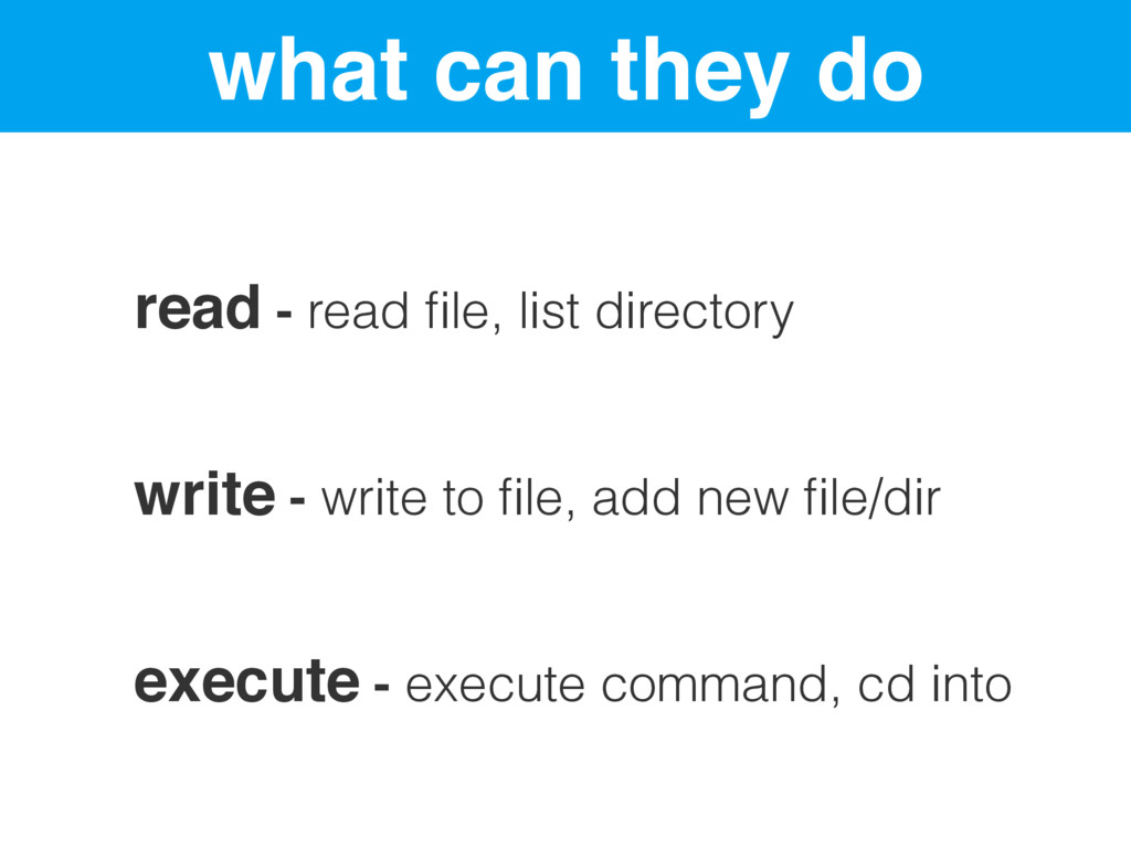 what can they do read - read file, list director...