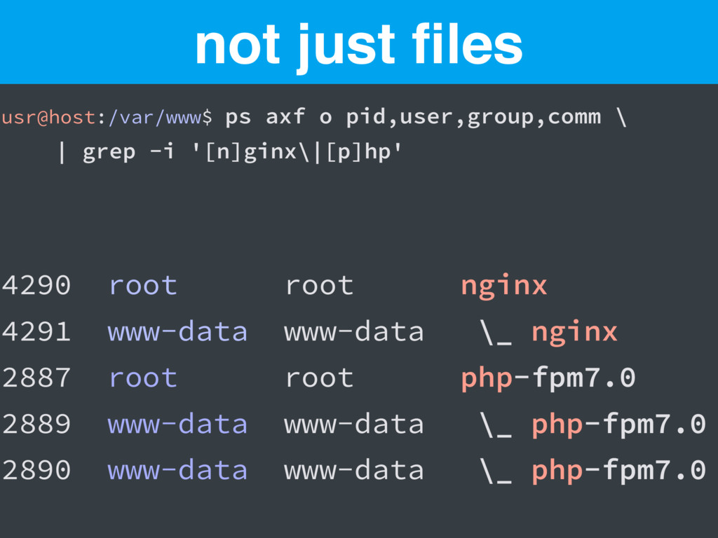 usr@host:/var/www$ ps axf o pid,user,group,comm...