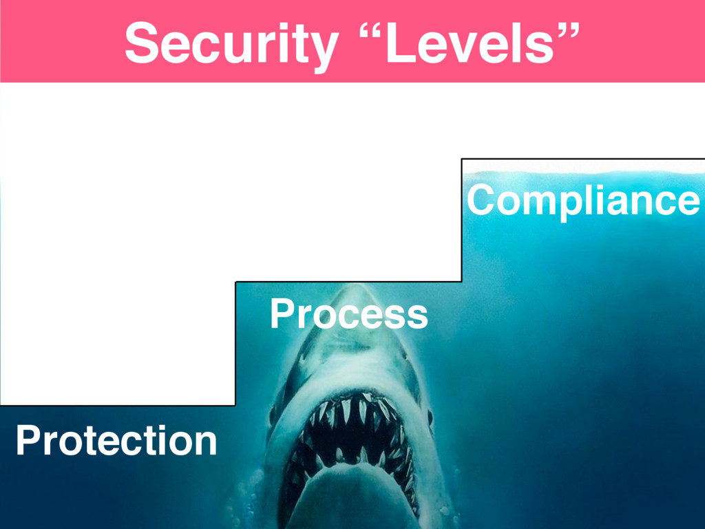 """Protection Process Compliance Security """"Levels"""""""