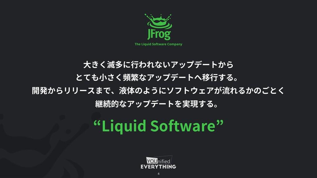 Liquid Software 4