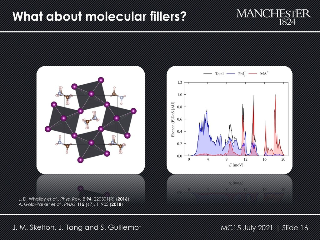 What about molecular fillers? J. M. Skelton, J....