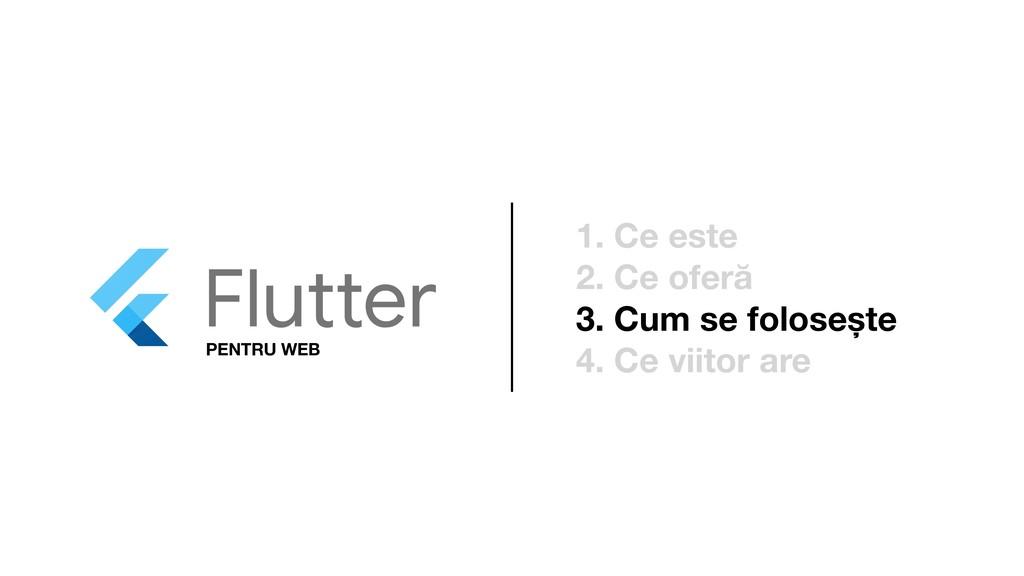 PENTRU WEB 1. Ce este 2. Ce oferă 3. Cum se fol...