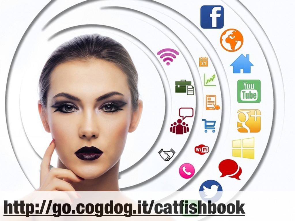 http://go.cogdog.it/catfishbook