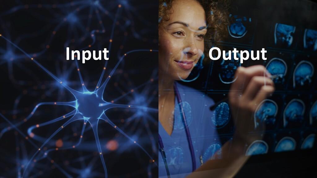   14 Input Output