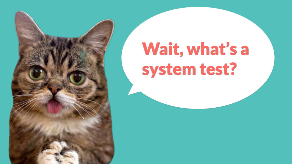 Wait, what's a system test?