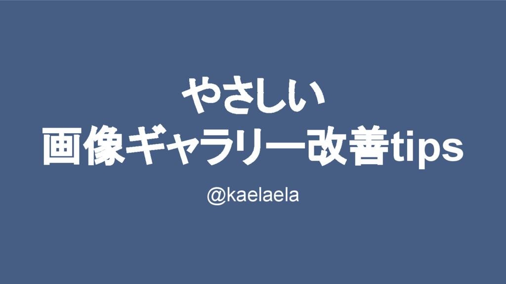 やさしい 画像ギャラリー改善tips @kaelaela