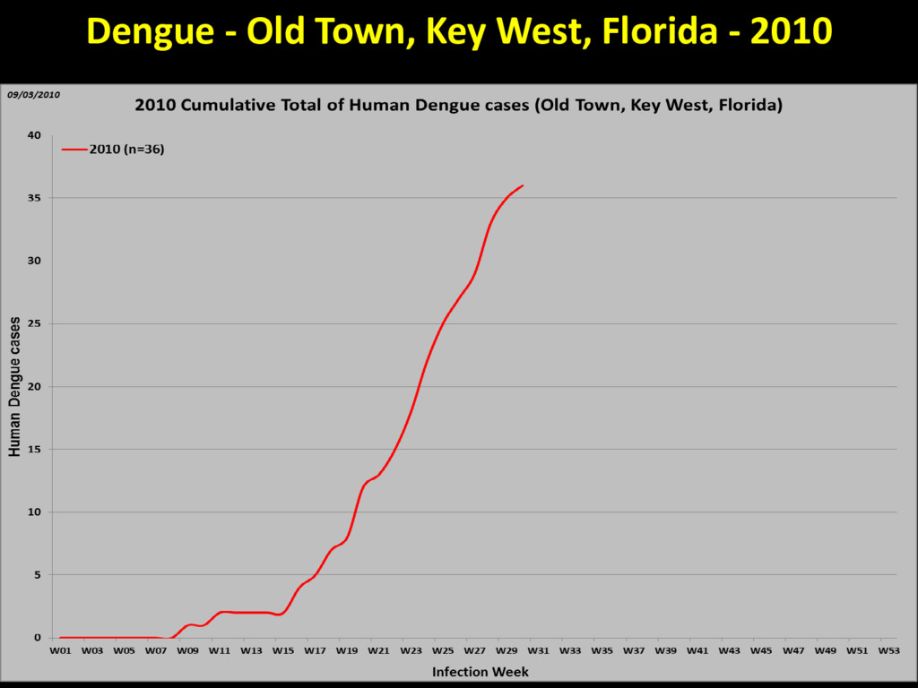 Dengue - Old Town, Key West, Florida - 2010