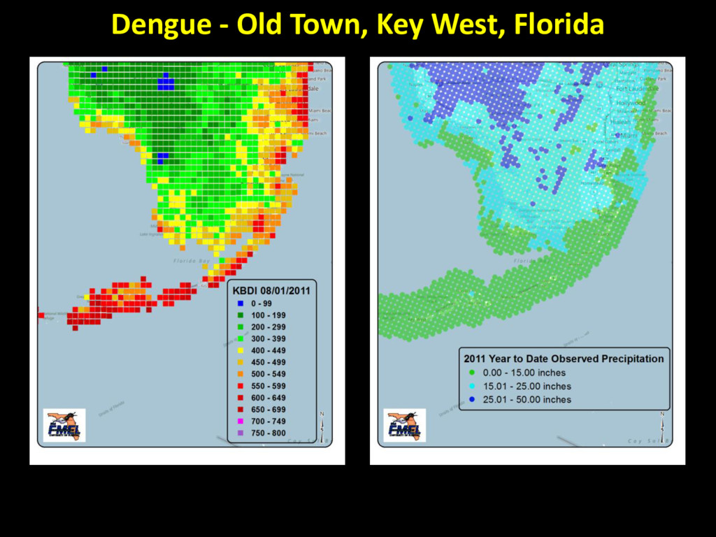 Dengue - Old Town, Key West, Florida