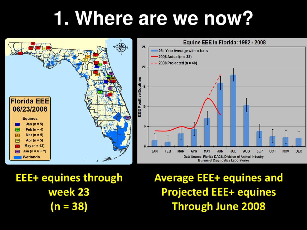 EEE+ equines through week 23 (n = 38) Average E...