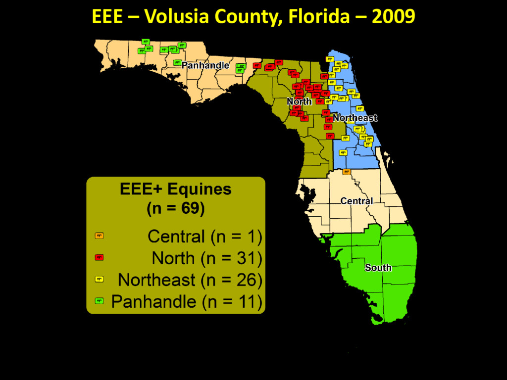 EEE – Volusia County, Florida – 2009