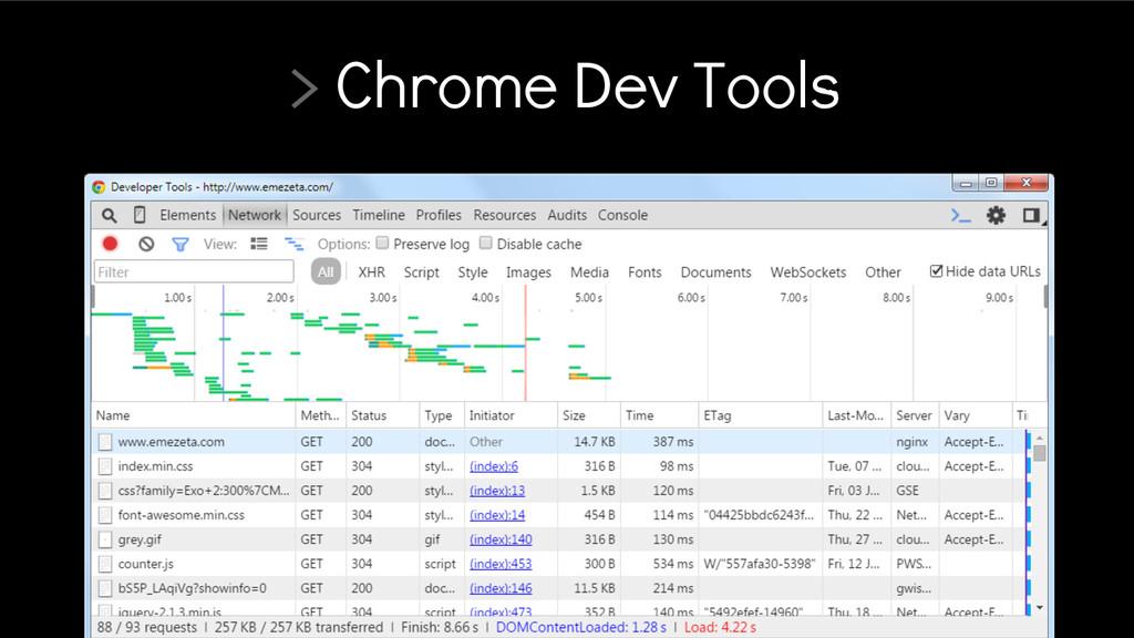 > Chrome Dev Tools