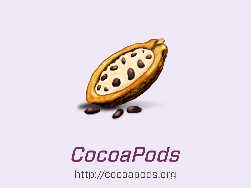 CocoaPods http://cocoapods.org