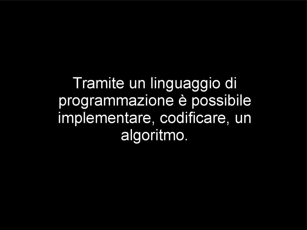 Tramite un linguaggio di programmazione è possi...