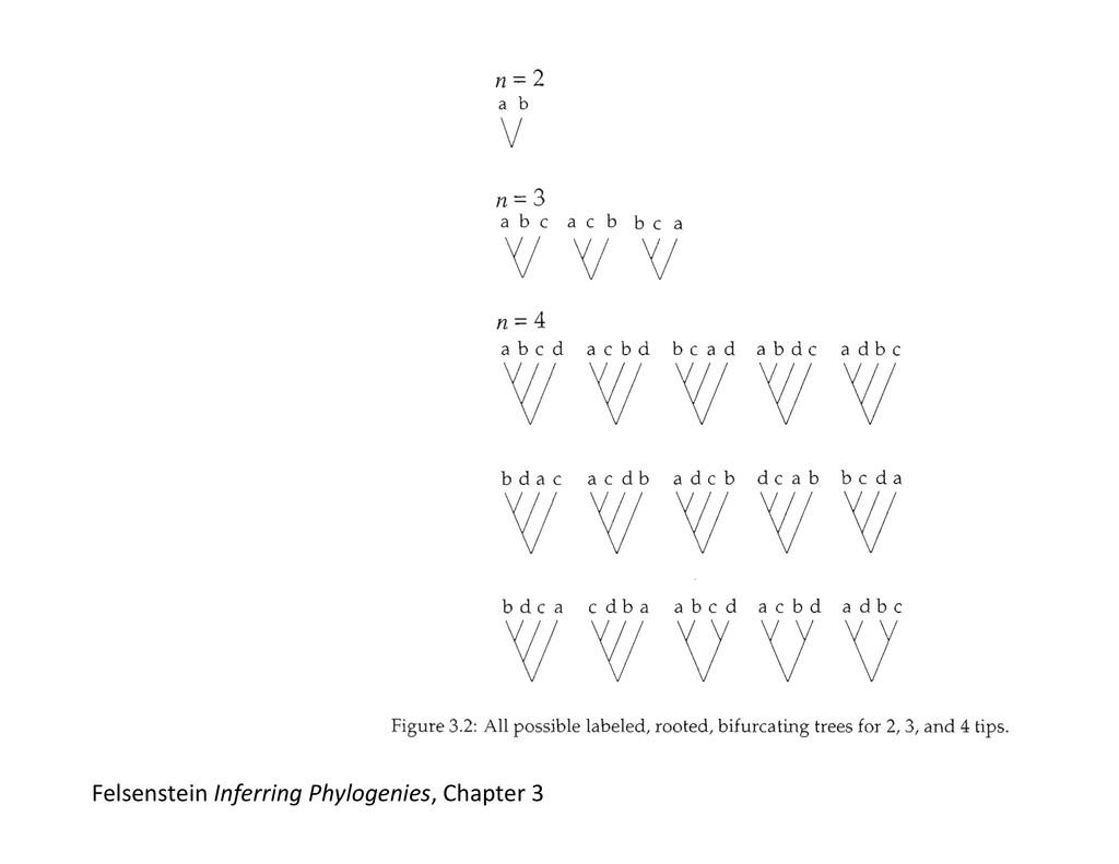 Felsenstein Inferring Phylogenies, Cha...