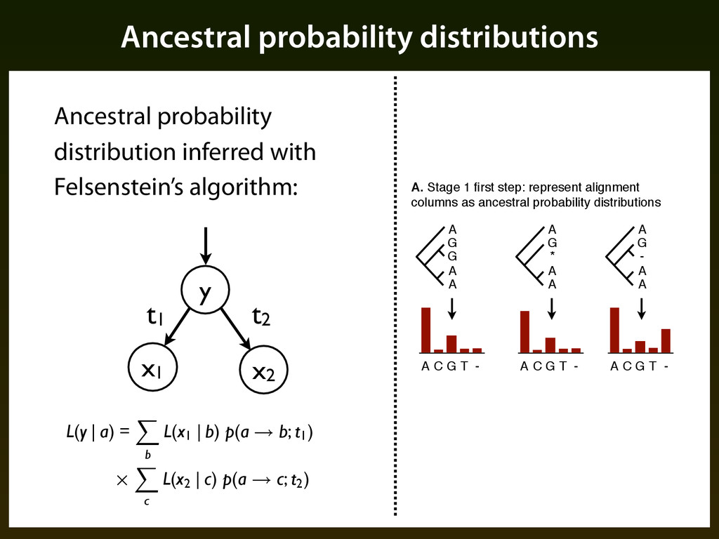 Ancestral probability distributions Ancestral p...