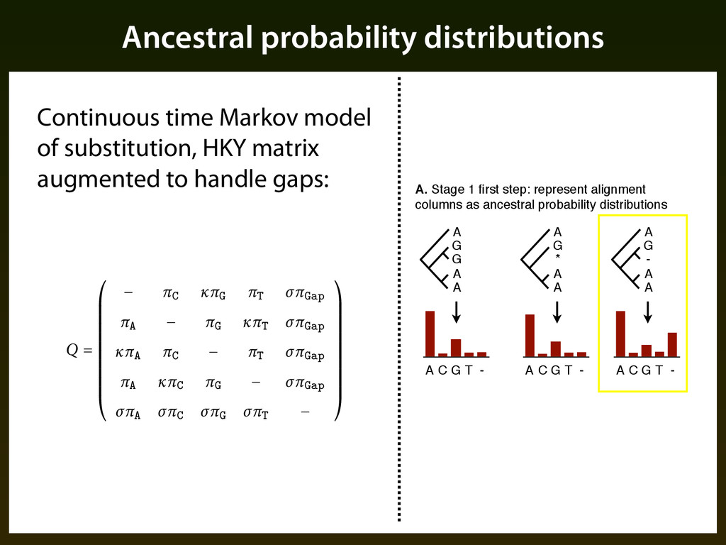 Ancestral probability distributions A G G A A A...