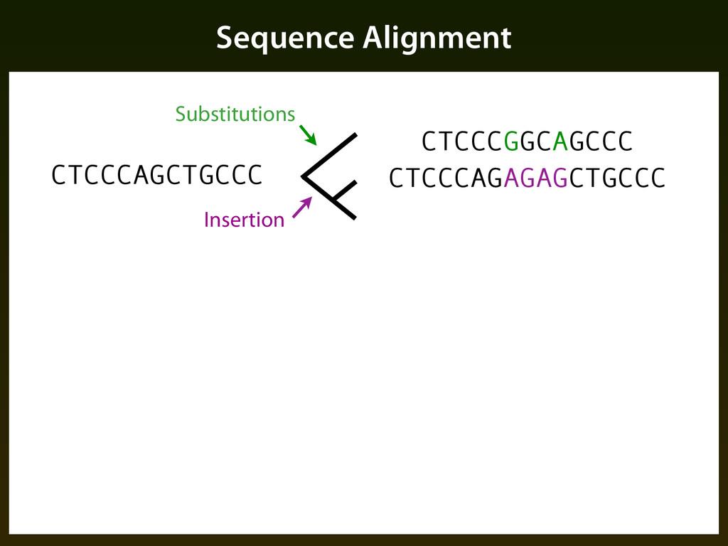 Sequence Alignment CTCCCAGCTGCCC Substitutions ...