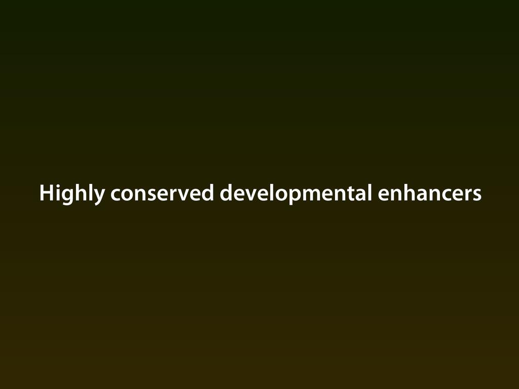 Highly conserved developmental enhancers