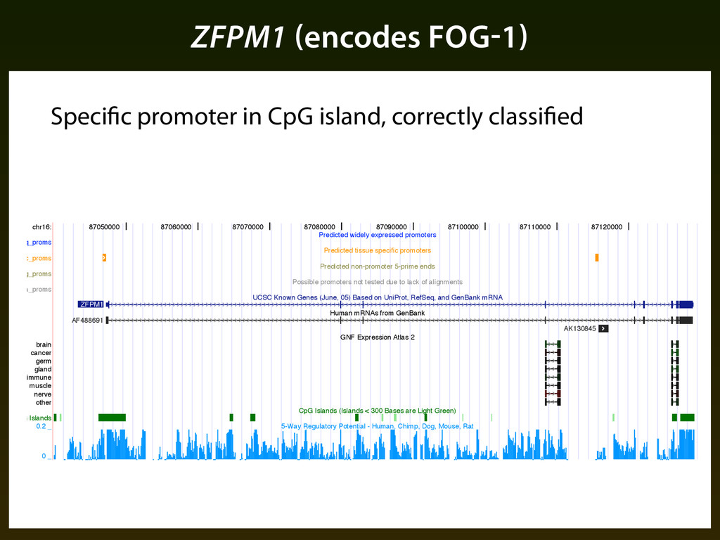 ZFPM1 (encodes FOG-1) chr16: ubiq_proms spec_pr...