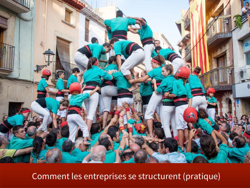 Comment les entreprises se structurent (pratiqu...