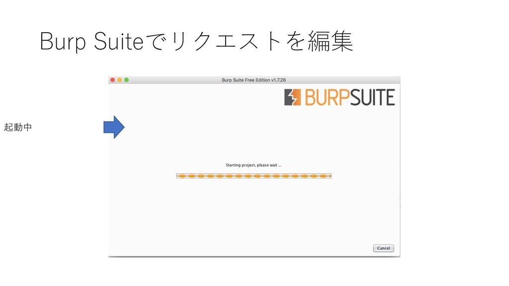 Burp Suiteでリクエストを編集 起動中