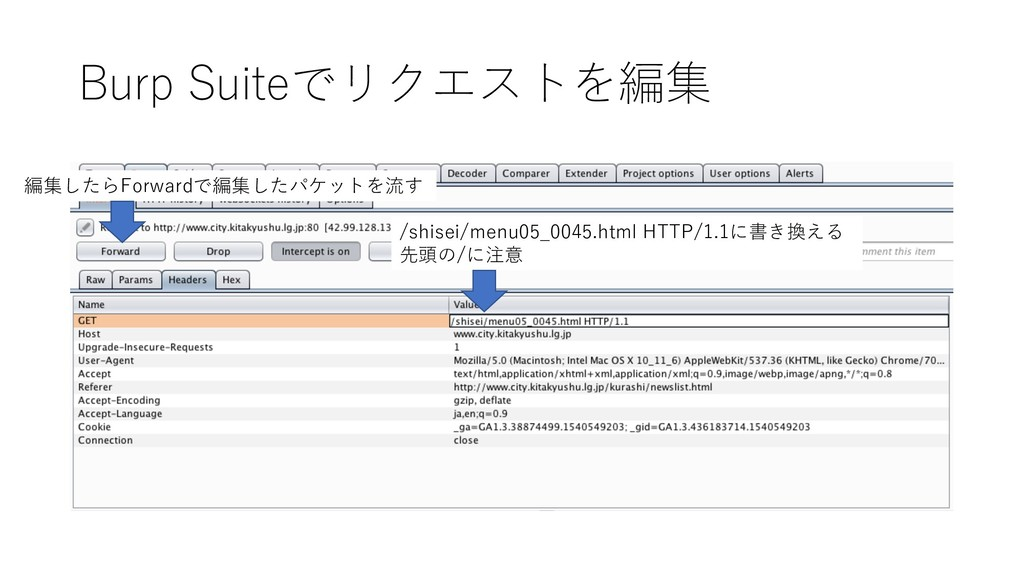 Burp Suiteでリクエストを編集 /shisei/menu05_0045.html HT...